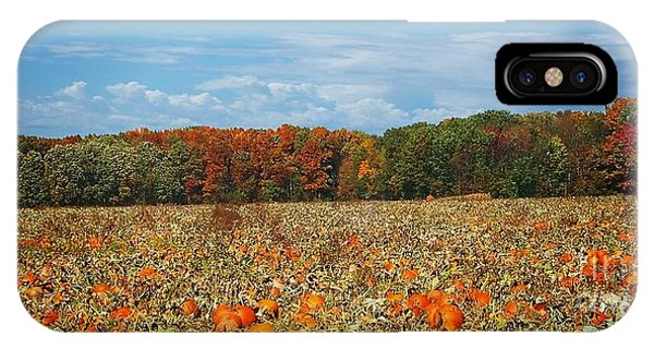 Pumpkin Patch - Panorama IPhone Case