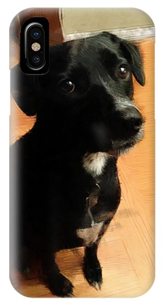 Puppy Dog Eyes Phone Case by Paul Gioacchini