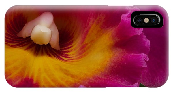 Pure Beauty All Profits Go To Hospice Of The Calumet Area IPhone Case