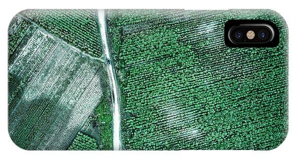Above iPhone Case - Pure Green by Zhou Chengzhou
