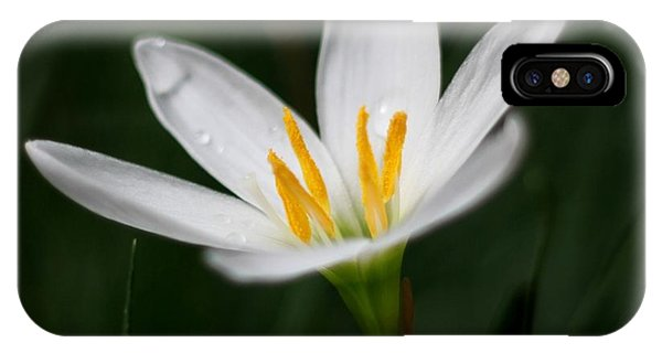 Pure White - Lily IPhone Case