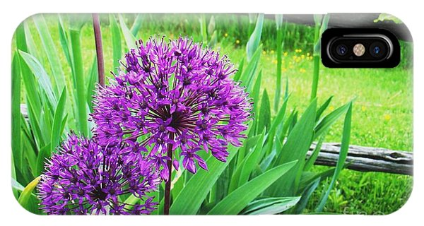 Purple Alium IPhone Case