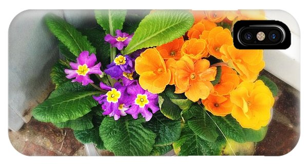 Orange iPhone Case - Purple And Orange Flowers by Matthias Hauser