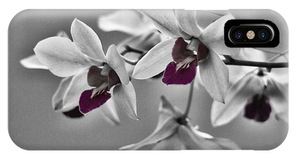 Purple And Pale Green Orchids - Black And White IPhone Case