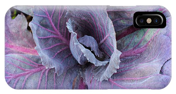 Purple Cabbage - Vegetable - Garden IPhone Case