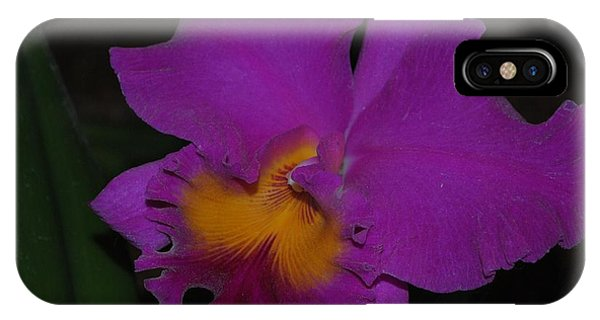Purple Cattleya IPhone Case