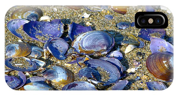 Purple Clam Shells On A Beach IPhone Case