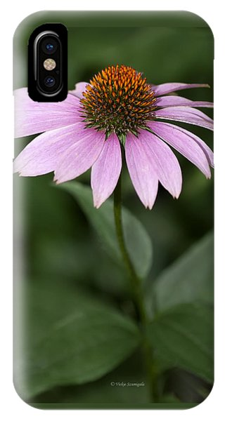 Purple Cone Flower IPhone Case