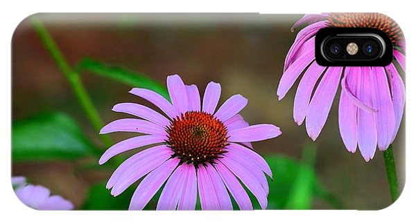 Purple Coneflower - Echinacea IPhone Case