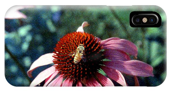 Purple Echinacea IPhone Case