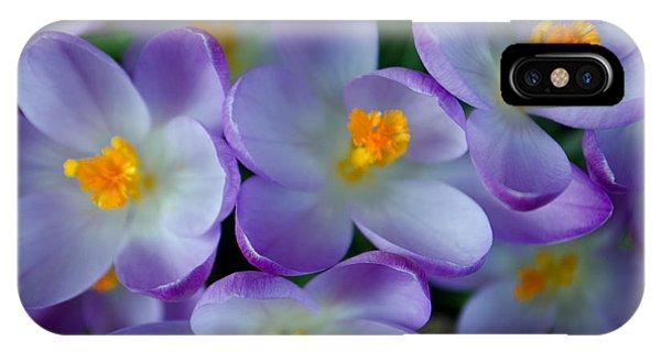Purple Crocus Gems IPhone Case