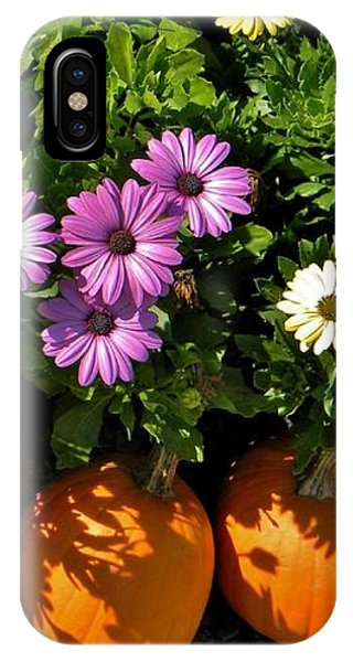 Purple Daisies And A Touch Of Orange IPhone Case