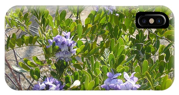 Purple Desert Flowers IPhone Case