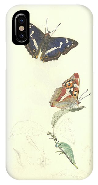 Purple Emperor Butterfly Phone Case by Natural History Museum, London/science Photo Library