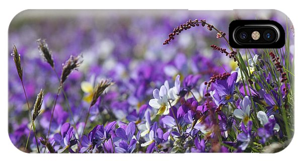 Purple Flower Bed IPhone Case
