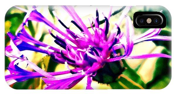 Petals iPhone Case - Purple Flower by Jason Michael Roust