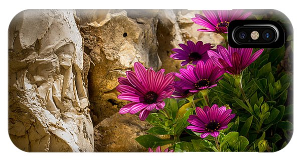 Purple Flowers And Rocks IPhone Case