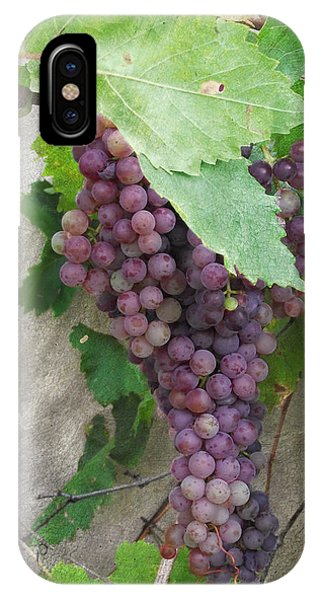 Purple Grapes On The Vine IPhone Case