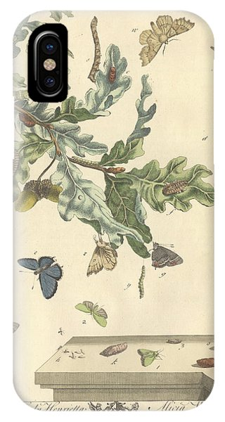 Chrysalis iPhone Case - Purple Hairstreak Butterfly by Natural History Museum, London/science Photo Library