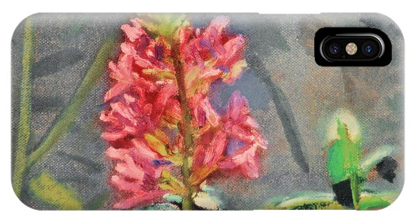 Purple Loosestrife IPhone Case