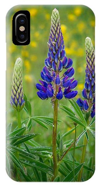 Purple Lupines IPhone Case