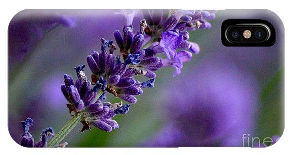 Purple Nature - Lavender Lavandula IPhone Case
