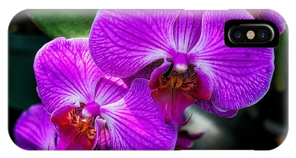 Purple Orchid Glow IPhone Case