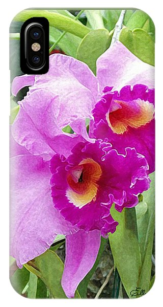 Purple Cattleya Orchids IPhone Case