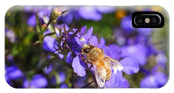 Purple Pollination  IPhone Case