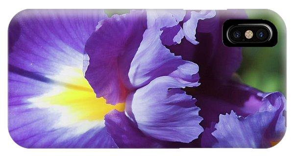 Purple Ruffles IPhone Case