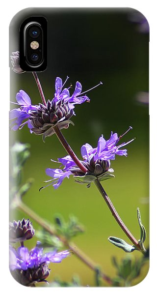 Purple Sage IPhone Case