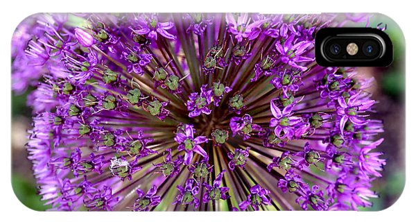 Purple Sensation Allium IPhone Case