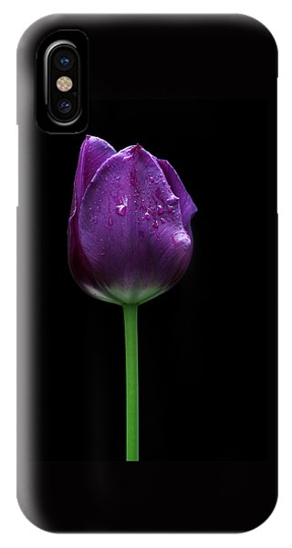 Purple Tulip IPhone Case