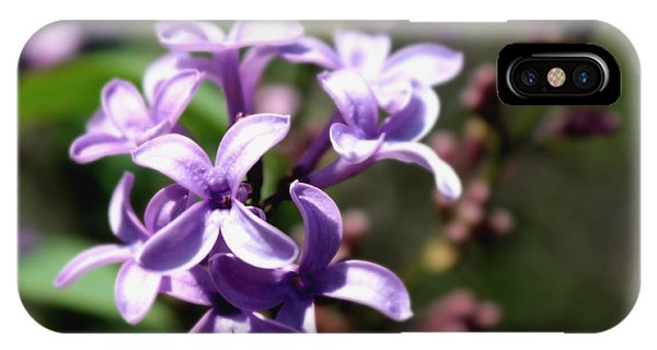 Purple Wild Flowers IPhone Case