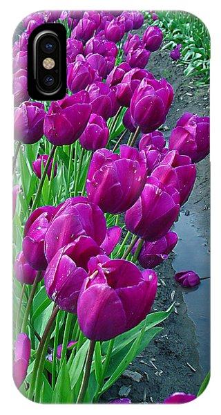 Purplepassion IPhone Case