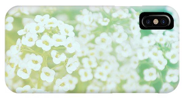 Sherri iPhone Case - Queenstown Flowers #2 by Sherri Abell