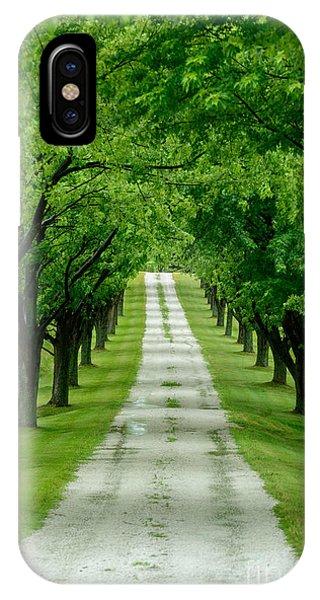 Quiet Path Between Trees IPhone Case