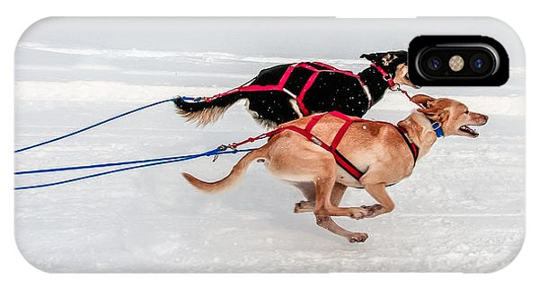 Racing Sled Dogs IPhone Case