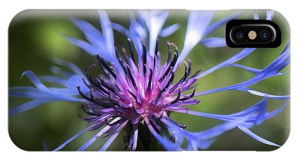 Radiant Flower IPhone Case