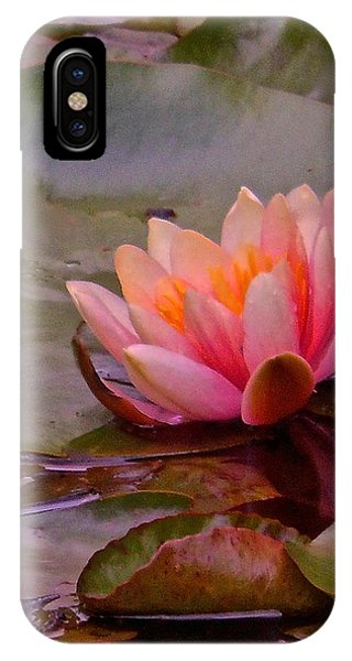Radiant Lily IPhone Case