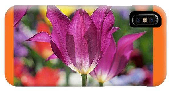 Radiant Purple Tulips IPhone Case