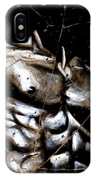 Bogdanoff iPhone Case - Rafael - Study No. 1 by Steve Bogdanoff