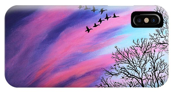 Raging Sky And Canada Geese IPhone Case