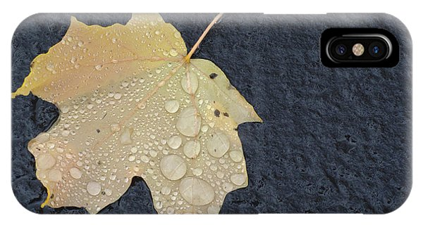 Rain Drops On A Yellow Maple Leaf IPhone Case