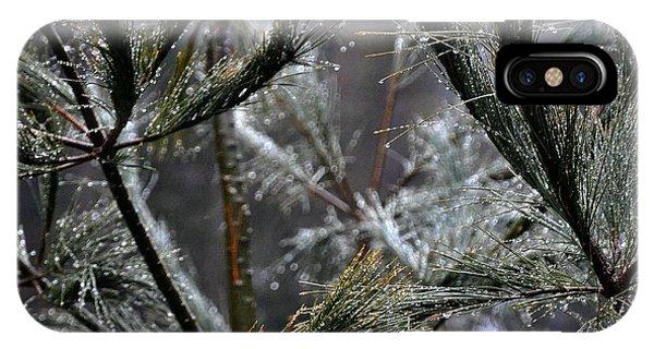 Rain On Pine Needles IPhone Case