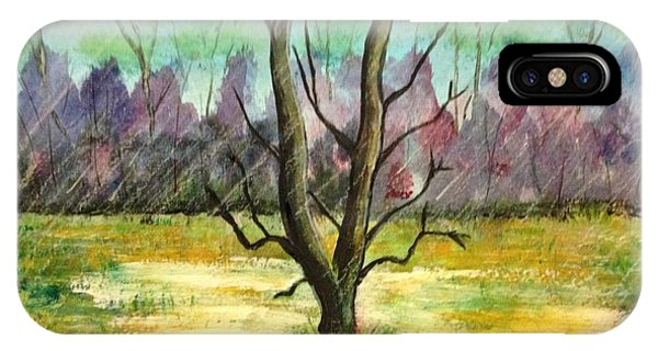 Rainy Day iPhone Case - Rain On The Meadow by Ronnie Egerton