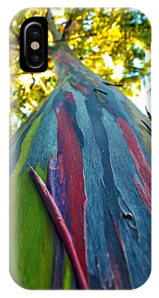 Rainbow Eucalyptus IPhone Case