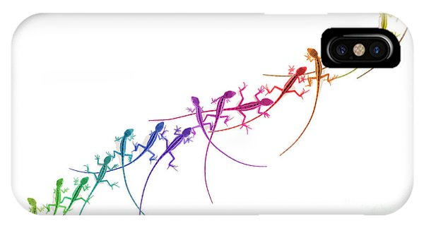 Rainbow Lizard Phone Case by Tim Gainey