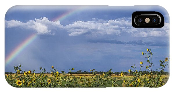Rainbow Over Sunflowers IPhone Case