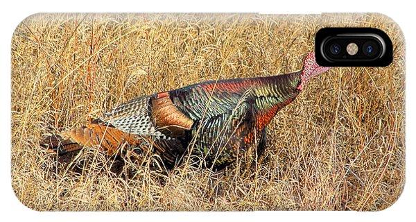 Rainbow Turkey IPhone Case